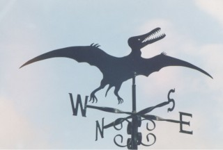 Pterodactyl weather vane