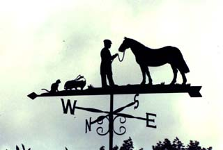Vet on Farm weather vane