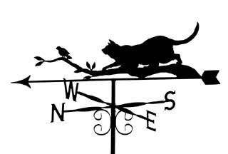 Cat on branch with bird weather vane