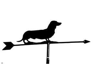 Dachshund Smooth - haired weather vane
