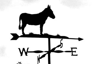 Donkey weather vane