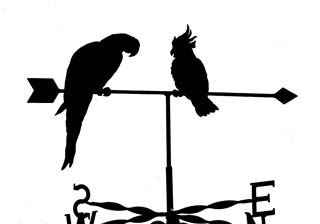 Parrot and Cockatiel weather vane