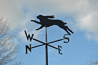 Hare p and s weathervane