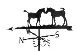 Two Foals weather vane