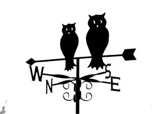 Owls on arrow weather vane