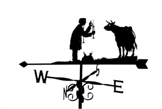 Vet weather vane