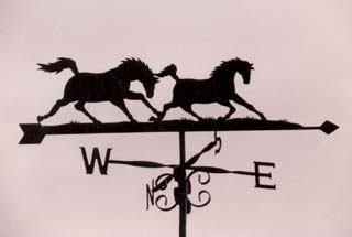 Wild Horses weather vane